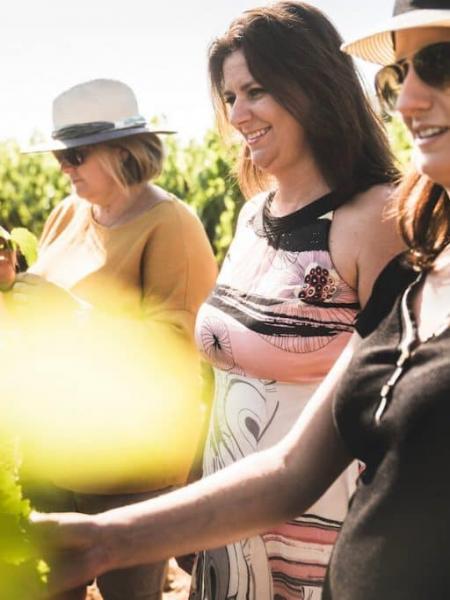 Des femmes et des vignes : vers la fin des préjugés ?